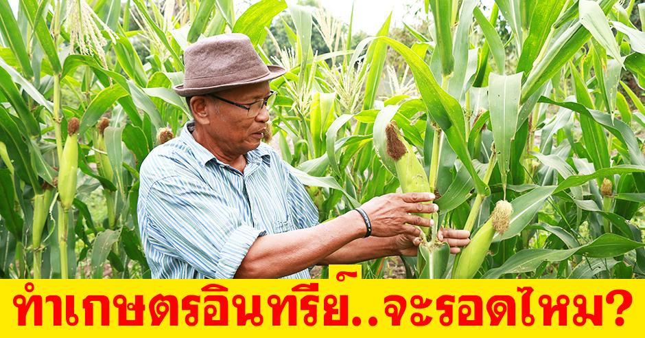 จะเกิดอะไรขึ้น?! เมื่อเกษตรกรรุ่นใหญ่ต้องหยุดเคมี..แล้วมาใช้อินทรีย์แทน!